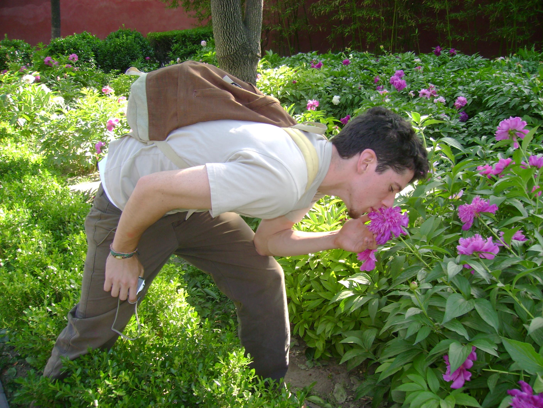 flower_guy